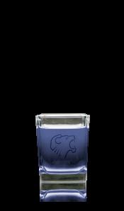 blueberrybomb